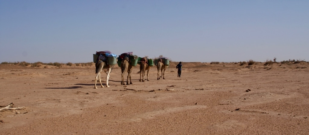 excursion in morocco